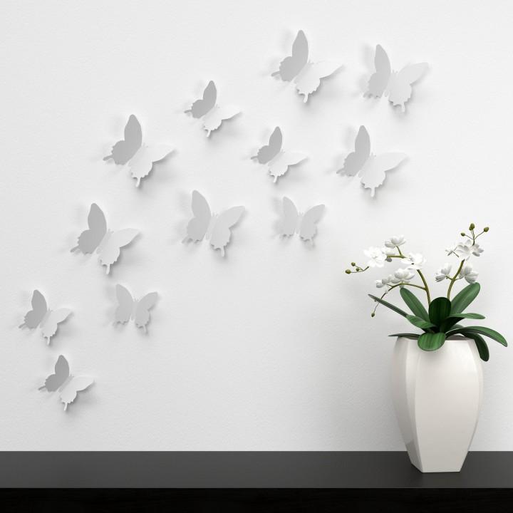butterfly-1049677_1280