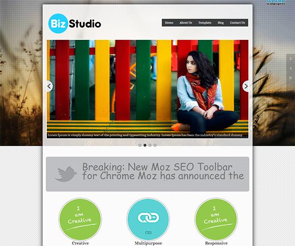 Bizstudio WordPress Theme