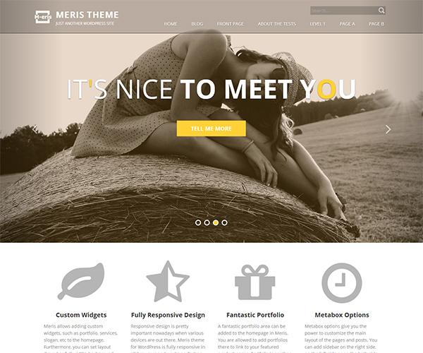 Meris WordPress Theme