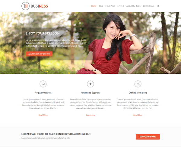 THBusiness WordPress Theme Screenshot