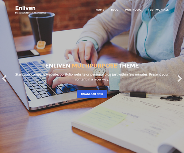 Enliven-WordPress-Theme