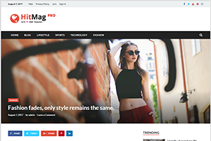 HitMag Pro Multiple Post Layouts