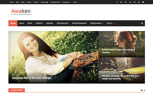 Best Quality WordPress Themes